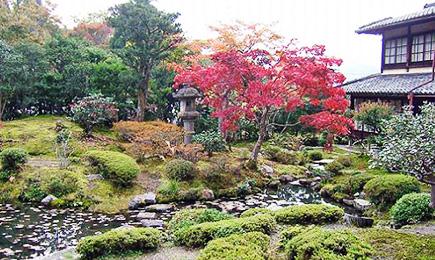 光雲寺庭園
